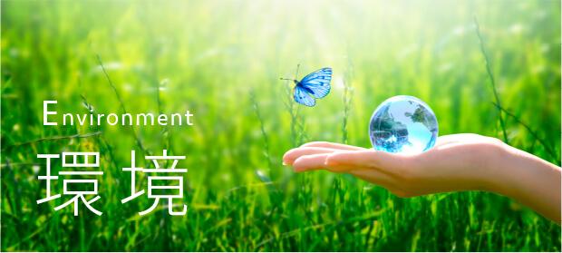 環境(Environment)